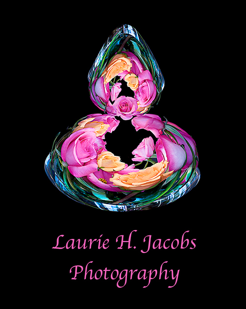 Welcome to lauriejacobsphotography.com